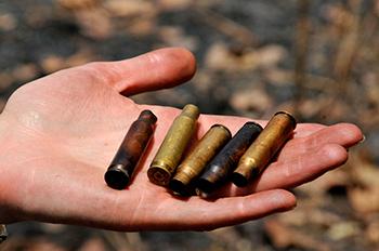 Kogelhulzen, stille getuigen van de moordaanslagen op olifanten in Kameroen.