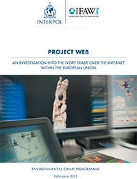Download the INTERPOL Project WEB report by clicking here.