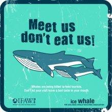 Meet us don't eat us!