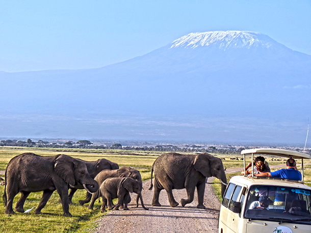 Safari companies rally to fight Ebola fear mongering