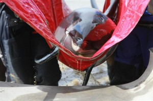 The International Fund for Animal Welfare Marine Mammal Rescue and Research team rescues an Atlantic white-sided dolphin.