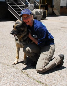 An IFAW staff member in Memphis with a sheltering German shepherd.
