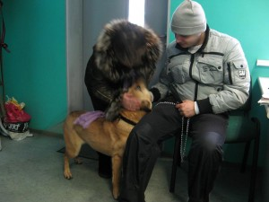 Lada with her new family and her head's a blur of excitement.