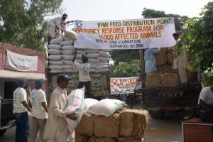 IFAW animal food distribution location.