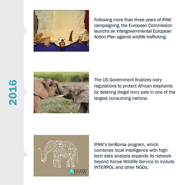 Historical Canadian Events From 1980 2015 Timeline: IFAW - International Fund For Animal Welfare