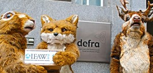 The IFAW UK team hands off declarations at the DEFRA office in London.