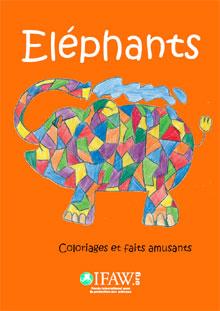 Programme éducatif Fascinants éléphants
