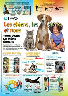 Programme éducatif | Les chiens, les chats et nous
