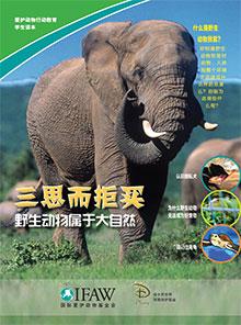 野生动物属于大自然   课程计划