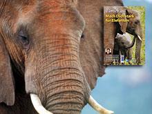 Mach Dich stark für Elefanten