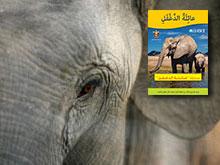 Big Trunks, Tiny Tales in Arabic