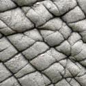 Elephant Cube Image 9
