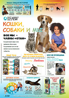 Cats, Dogs, and Us Classroom Poster