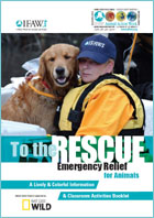 To the Rescue Education Programme