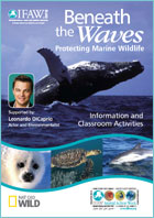 Beneath The Waves Education Programme