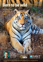 Born to Be Wild UK Secondary Teaching Guide