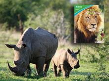 Keep Wild Animals Wild