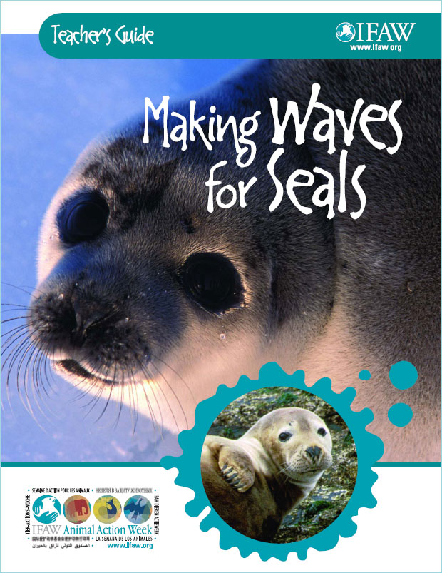 Making Waves for Seals Education Programme