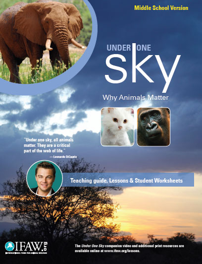 Under One Sky Education Programme