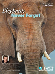 Elephants, Never Forget Education Programme