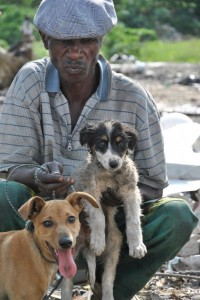Two dogs with their owner in Randfontein dump in South Africa.