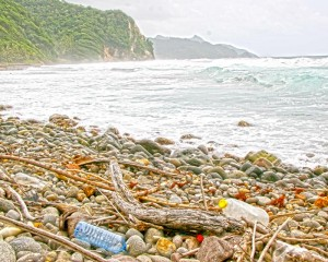 Plastic bottles on the beach in Dominica.