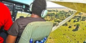 Steve Njumbi of IFAW counting elephants in the Tsavo-Mkomazi ecosystem. c. IFAW/D. Willetts