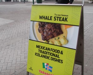 Tourists seem to be looking for a unique Icelandic plate.