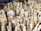 U.S. Ivory Crush