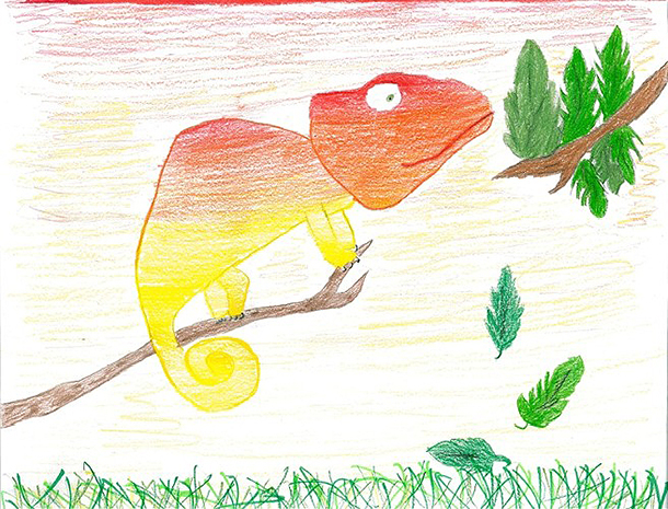 Julianna's depiction of a chameleon matching the colours of the sunset.