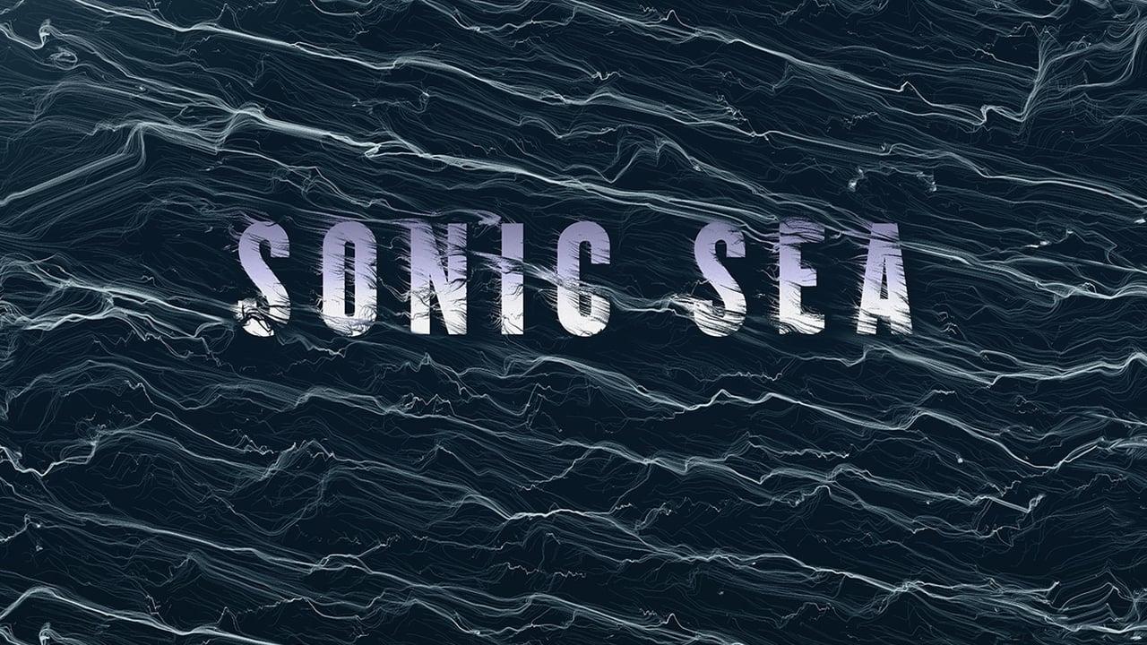 Vainqueur aux Emmy Awards, le documentaire « Sonic Sea » d'IFAW sera diffusé au