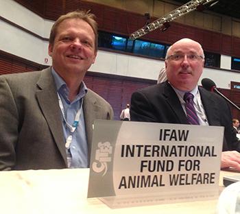 IFAW Präsident Azzedine Downes und Haiexperte Dr. Ralf Sonntag kämpfen für den Haischutz bei der Artenschutzkonferenz.