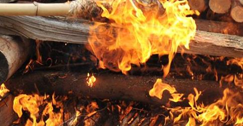 Öffentliche Verbrennung von Rhinozeros-Horn in Tschechien