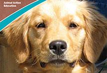 Honden, katten en wij lesprogramma