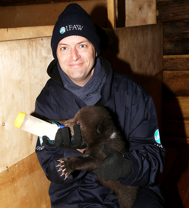 IFAW UK Director Phil Mansbridge helps with the regular feeding schedule.