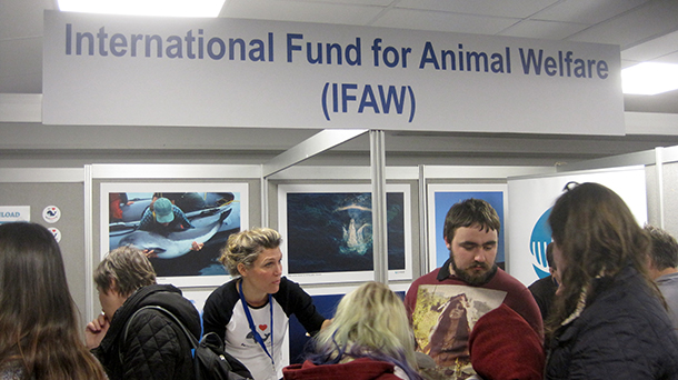 Barbara Slee at the IFAW booth for WHALEFEST 2015.