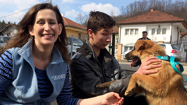 Lopare's dogs gradually gained more and more allies, until the whole community agreed that healthy, happy dogs make for a healthy, happy community.