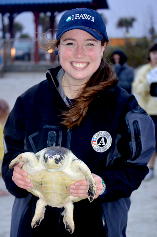 L'auteur participe à la remise en liberté de 17 tortues échouées
