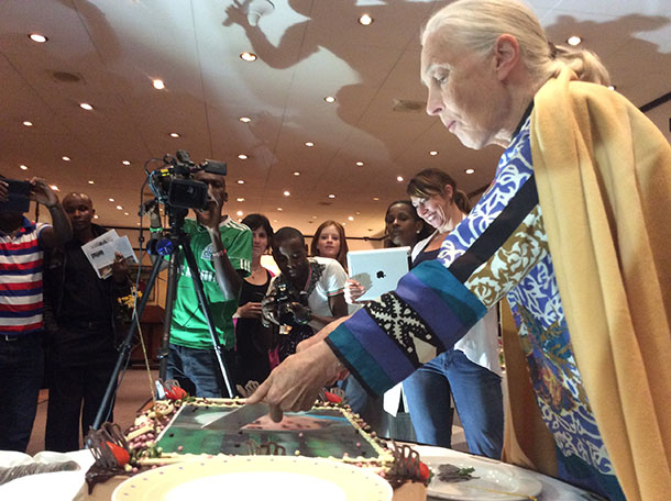 Jane Goodall cuts a cake for her 81st birthday and the 55th anniversary of her wild chimpanzee research