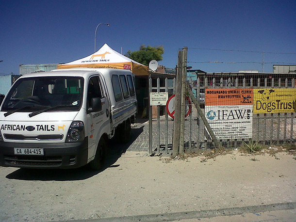 African Tails setting up at Mdzananda, an animal welfare clinic that provides services to pets and people in Khayelitsha, Cape Town's most populous township.