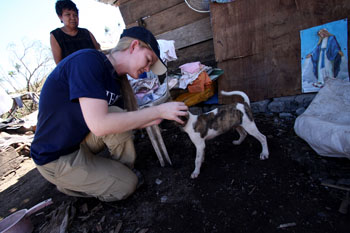 The author says hello inspects one of the animal survivors. c. IFAW/PAWS