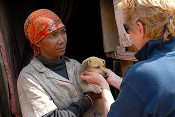 Cora Bailey, Project Founder of IFAW's Companion Animal Project in the townships of Johannesburg (CLAW), returns to a makeshift shack for a second visit to check on some puppies that had been vaccinated recently. © IFAW/B. Gasperini