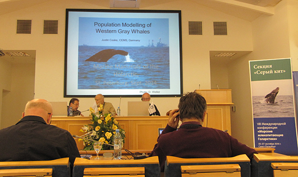 One of six presentations about the grey whale population at the Marine Mammal of the Holaractic International Conference VIII.