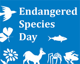 The USFWS Endangered Species Day logo by Jennifer Hennessey.