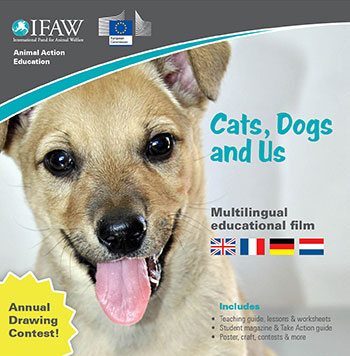 The cover of the Cats, Dogs and Us EU multilingual DVD that will be available soon.