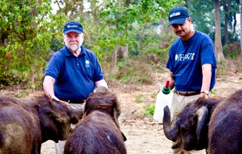 IFAW President, Fred O'Regan, left, feeding elephant calves at IFAW's Center for Wildlife Rehabilitation and Conservation (CWRC), Assam, India with Vivek Menon, right, Executive Director Wildlife Trust of India.