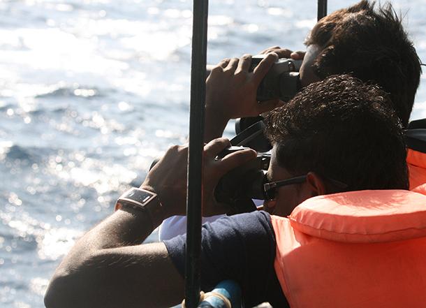 En suivant la trace de ces baleines, nous pourrons déterminer s'il est possible de déplacer le couloir de navigation plus au large afin de réduire les risques de collisions entre les navires et cette espèce menacée.