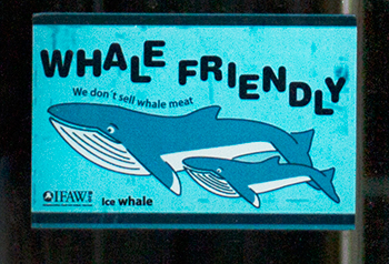 Whale friendly stickers are now visible at the entrance to 54 establishments in Iceland.