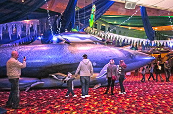 Some of the visitors to Whalefest in Brighton.