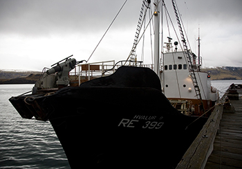 A whaling ship and harpoon used to hunt fin whales in Hvalfjordur, Iceland.
